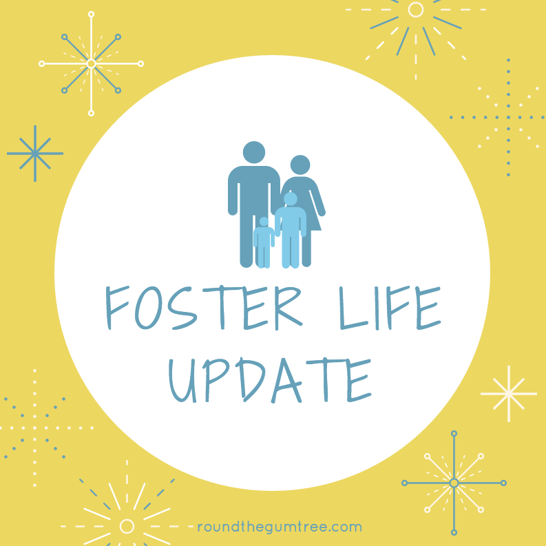 Foster Life Update 1